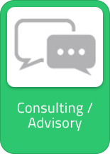 Consulting / Advisory